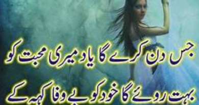 most-romantic-love-poetry-in-urdu-love poetry in urdu for girls