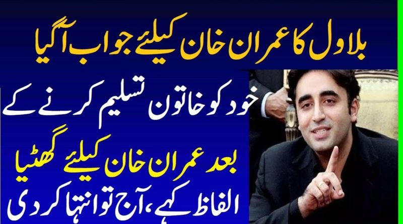 Bilawal Sahiba Reply To PM Imran Khan Statement After Sheikh Rasheed Funny - Bilawal Bhutto Funny