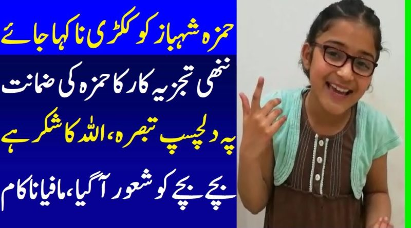 Pakistani Talented Little Kid Funny Analysis Over Hamza Shahbaz Bail From Lahore Court