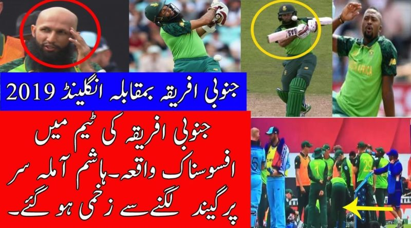 South Africa Vs England World Cup 2019 Match Hashim Amla retires hurt being hit by Archer bouncer