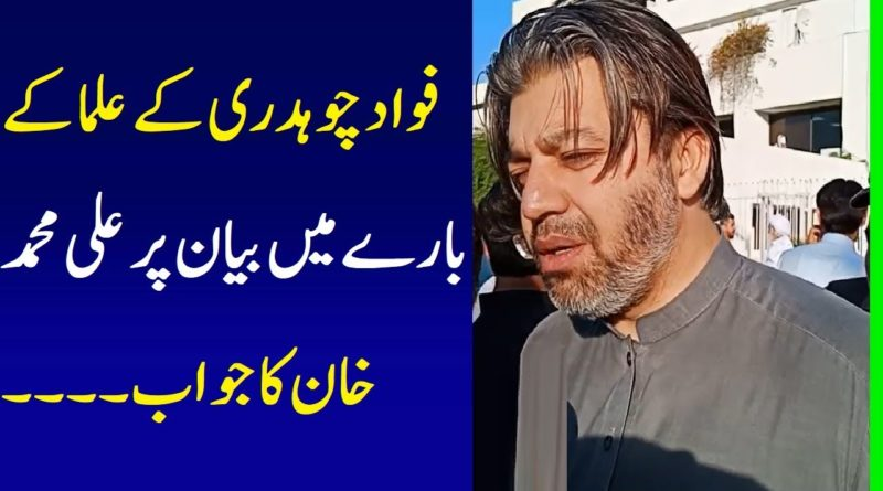 PTI Ali Muhammad Khan Response On Fawad Chaudhry Statement About Ullama