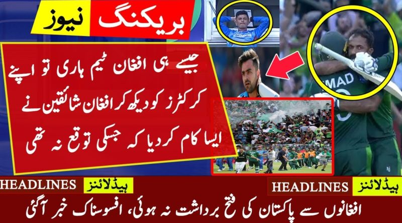 Afghan Fans reactions on watching Pakistan winning Moments| Imad Wasim Wahab Riaz Wins PAK VS AFG