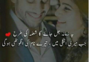 Love poetry-shayari urdu love-romantic poetry-love poetry