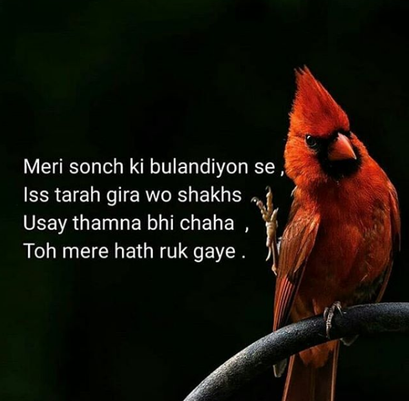 SAD POETRY IMAGES WALLPAPER PICTURES PICS DOWNLOAD FOR FACEBOOK & WHATSAPP