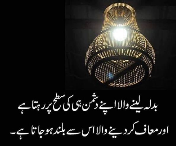 AMAZING QUOTES IN URDU IMAGES PICTURES PICS FREE HD