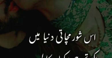 best urdu poetry in the world- love romantic poetry- Love couple poetry