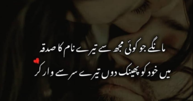 Shayari on love in urdu-poetry urdu love-best urdu shayari-amazing poetry