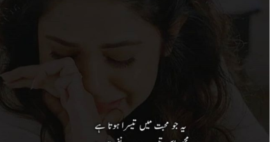 20+ Bewafa Poetry Urdu Poetry Sad Bewafa Shayari Images