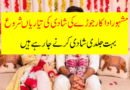 Famous Actor Ready for wedding-Desi TV Serial