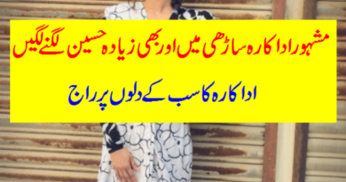 Famous Actress looking Gorgeous in Saree-Geo Entertainment