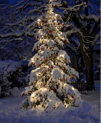 MERRY CHRISTMAS BEST IMAGES PICTURES PHOTO DOWNLOAD