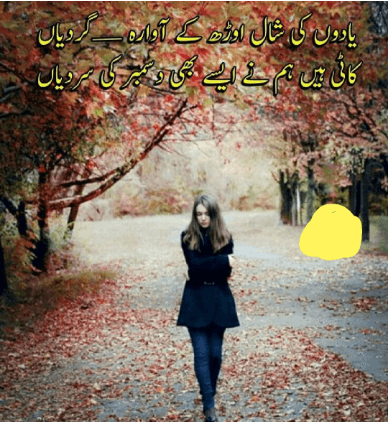 DECEMBER POETRY IN URDU IMAGES WALLPAPER PICTURES PHOTO PICS FREE LATEST DOWNLOAD