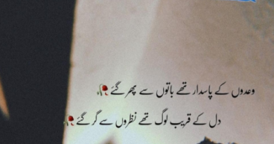 full sad poetry-sad shayari urdu-sad poetry in urdu 2 lines