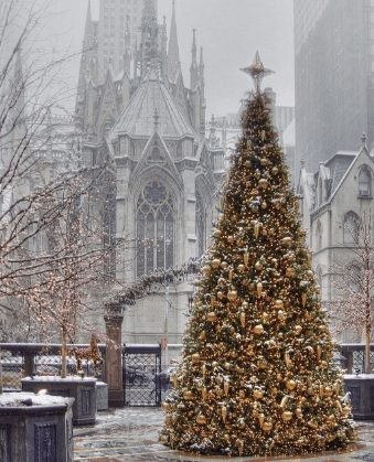 MERRY CHRISTMAS BEST IMAGES  PHOTO PICS HD DOWNLOAD