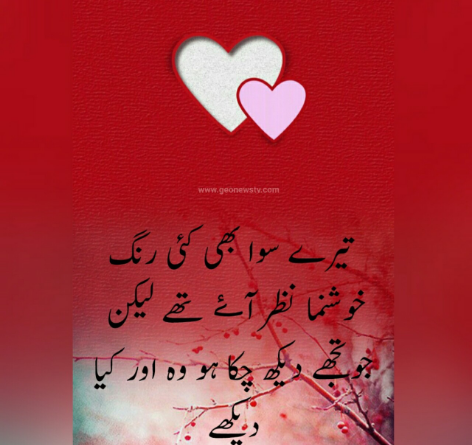 Love couple poetry- love poetry sms- 2 line urdu love shayari