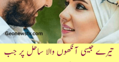 Amazing poetry-shayari on love in urdu-Urdu Hindi Shayari