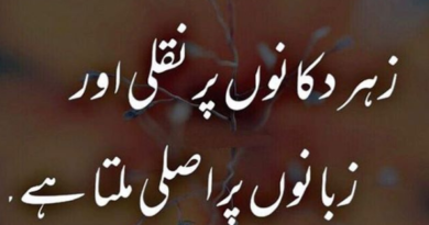 Short poetry in urdu- urdu poetry sms- urdu shayre-amazing poetry
