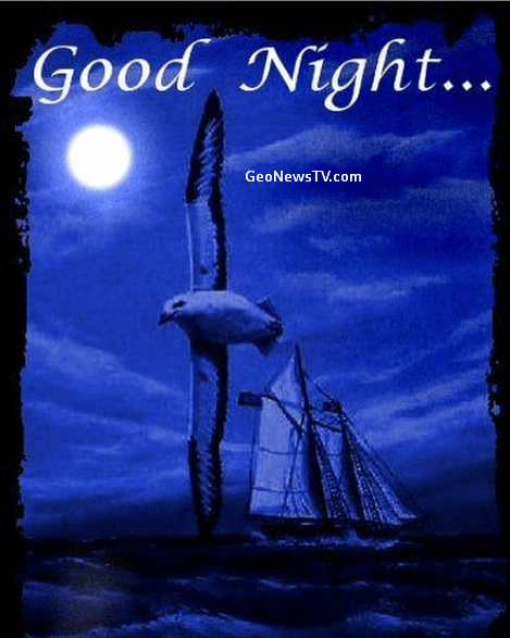 GOOD NIGHT IMAGES WALLPAPER PICS PHOTO PICTURES HD DOWNLOAD