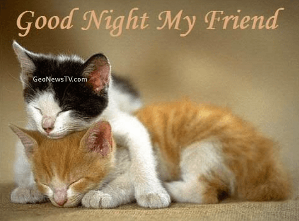 GOOD NIGHT IMAGES WALLPAPER PICS PHOTO PICTURES HD FREE FREE DOWNLOAD
