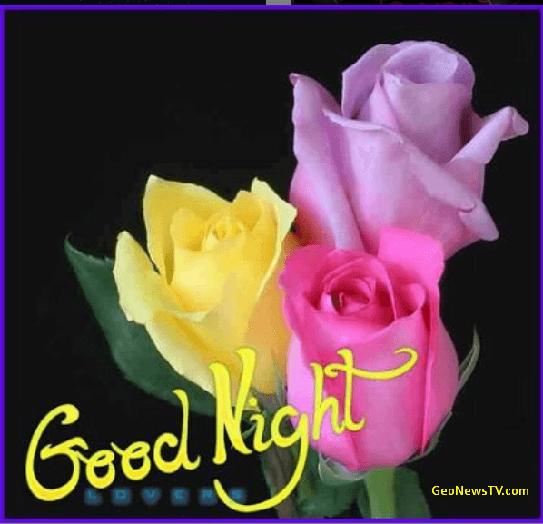 Good Night Images Wallpaper Photo for Lover Free Download