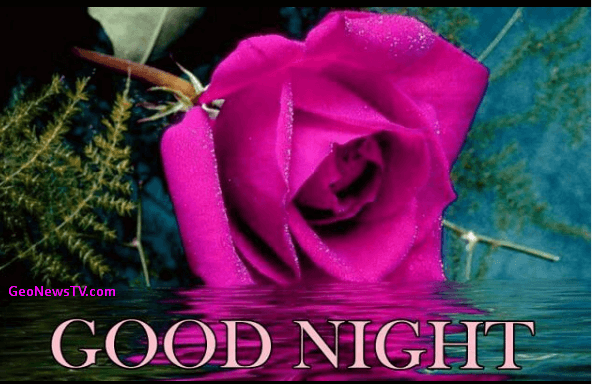 GOOD NIGHT IMAGES WALLPAPER PHOTO PICTURES DOWNLOAD