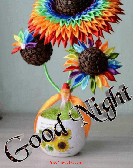 Good Night Images HD Download for facebook Free