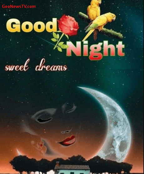 Good Night Images Pics HD Download for Whatsapp & Facebook