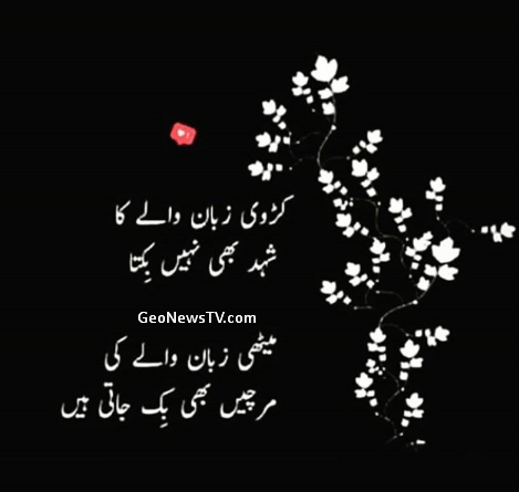 Hindi quotes-Ashfaq ahmad urdu quotes-Sad life urdu quotes