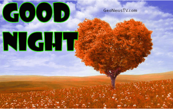 GOOD NIGHT IMAGES WALLPAPER PICS PHOTO PICTURES FREE HD DOWNLOAD WITH RED ROSE