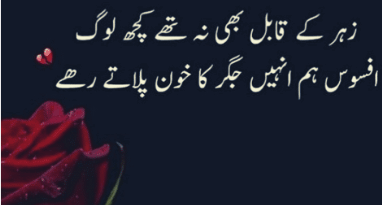 Full sad poetry-sad shayari in urdu-sad poetry-Amazing Poetry in urdu