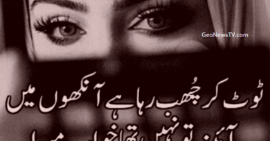 Amazing Poetry- New Poetry in Urdu- Short Poetry in Urdu- Ashar in Urdu