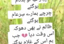 Sad love poetry in urdu-Urdu sms poetry-Amazing poetry in Urdu