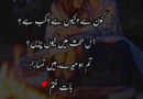 Love couple poetry-Love poetry sms-2 line love shayari-Amazing Poetry