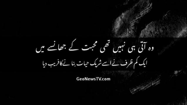 Amazing Poetry-Best Poetry Ever-New Poetry in Urdu-Geo Poetry