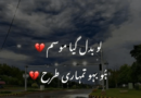 Amazing Poetry in urdu- Sad Love Poetry in Urdu- Poetry Sad