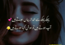 new poetry in urdu-best urdu poetry in the world-love romantic poetry