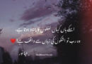Urdu shayari images sad-Best love shayari in urdu-Nida fazli shayari