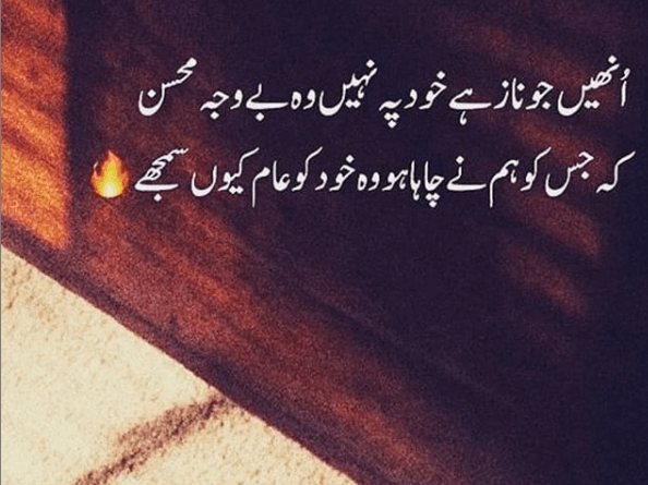Urdu shayari-Amazing poetry-Girlfriend shayari in urdu-Best urdu poetry