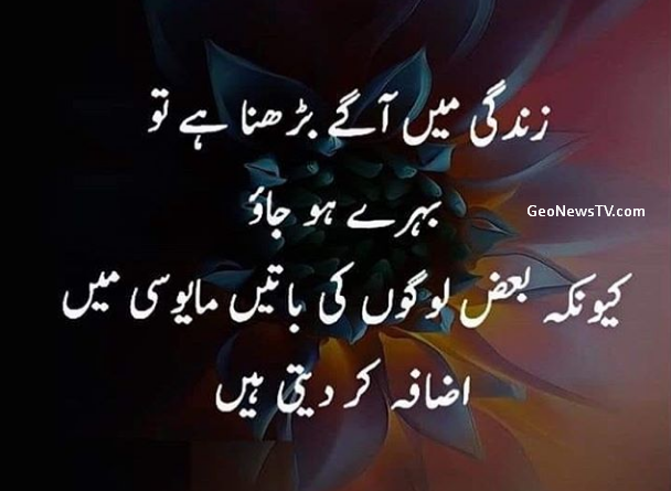 Urdu quotes images-Aqwal zareen in urdu-Amazing quotes in urdu