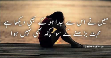 True love shayari-Love shayari in hindi for girlfriend-Best love shayari