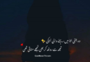 Best shayri for love-Very romantic shayari-Beautiful hindi love