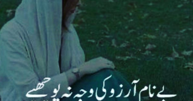 2 line urdu shayari-Sad poetry in urdu-Sad shayari in urdu-Sad poetry
