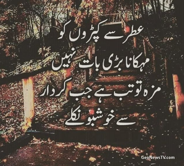 Quotes on life in urdu-Islamic quotes in urdu-Quotes about Islam