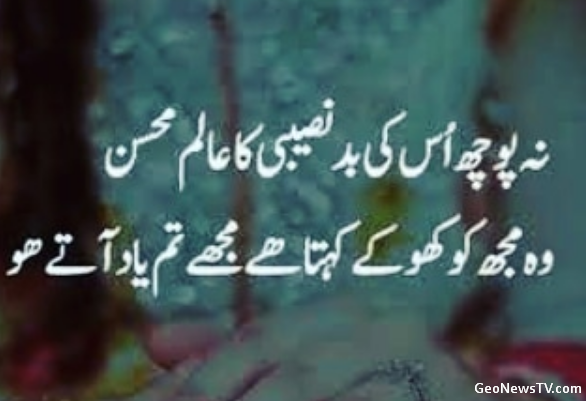 Urdu Poetry Sad-Sad Poetry in Urdu 2 lines-Poetry Urdu Sad